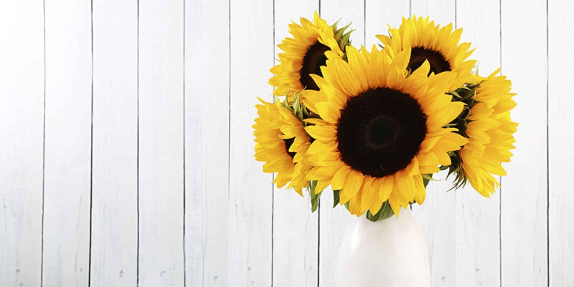 sunflower-kitchen-decor