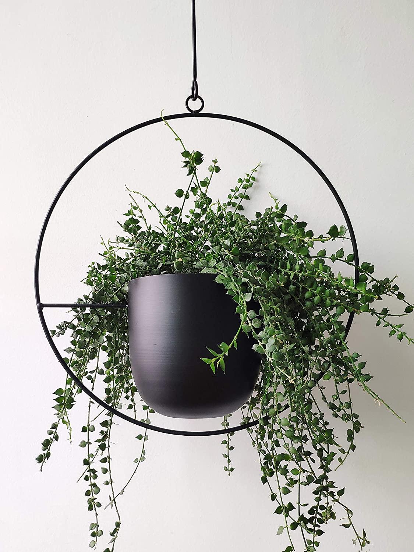 modern-planters-hanging